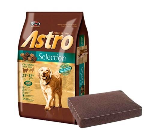 Astro Adulto sb 10k