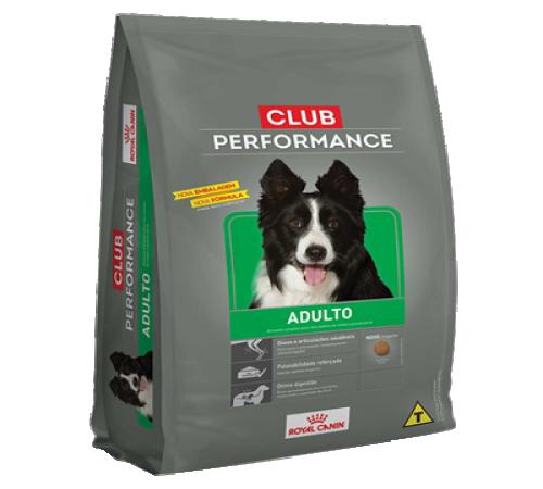 Royal Canin Club Performance Adulto 15k + Snacks De Regalo