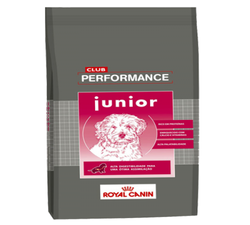 Royal Canin Club Performance Junior 15k + Snacks De Regalo